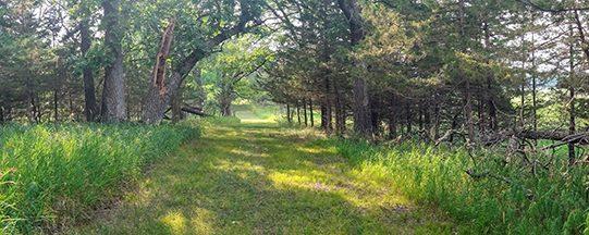 Prairie Woods Sound Garden